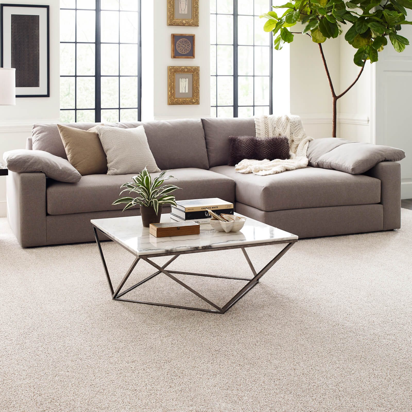 Carpet in living room | Georgia Flooring