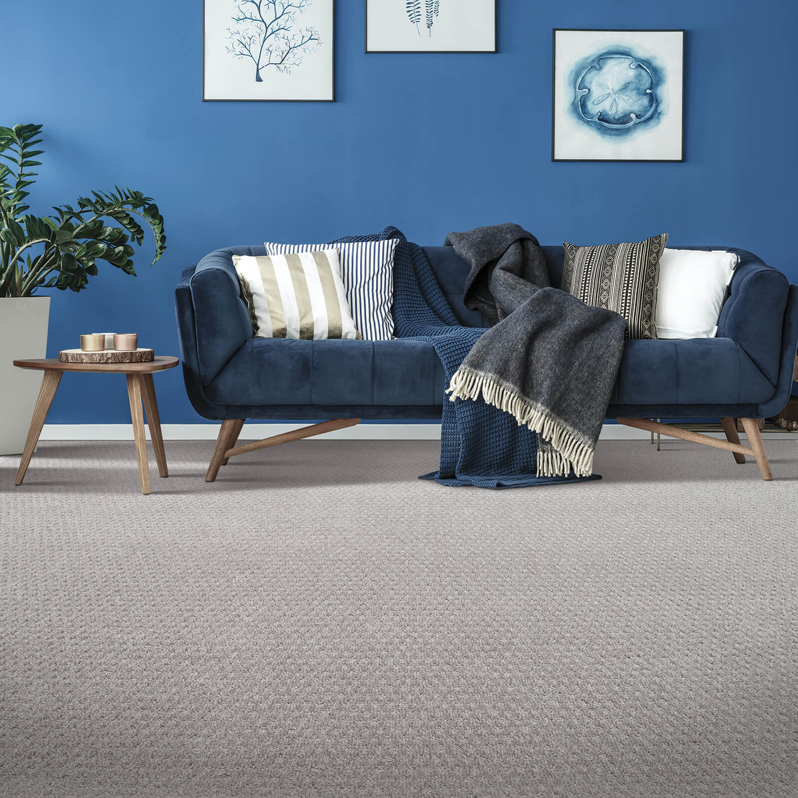 Blue couch on Carpet flooring | Georgia Flooring