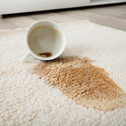 Carpet cleaning tips | Georgia Flooring